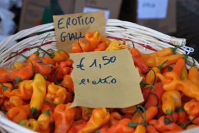 """Erotic"" yellow peppers!"