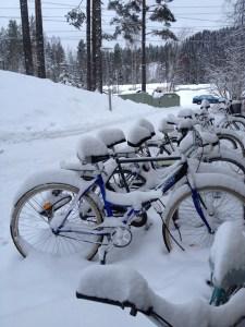 Snowy bikes