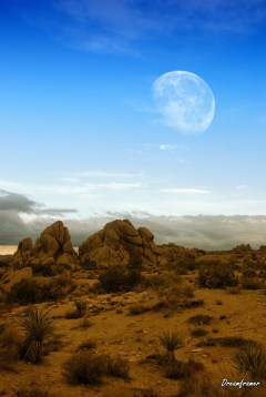 Moon over Desert - ©Dreamframer