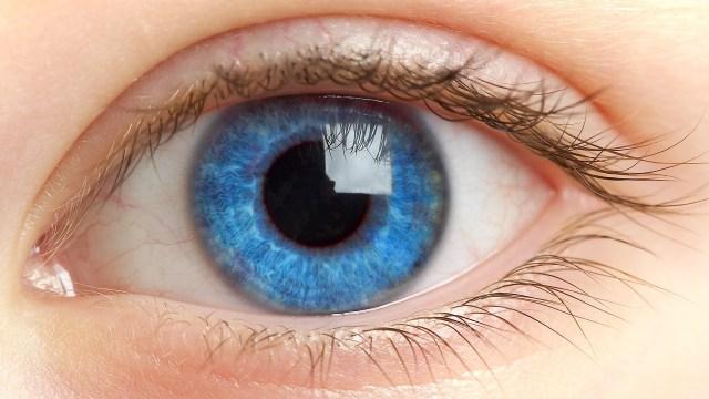 Image result for eye
