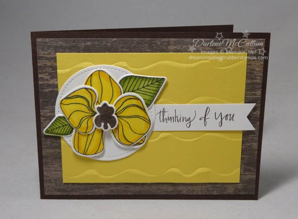 Climbing Orchid by Stampin Up