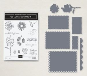 Color & Contour Bundle