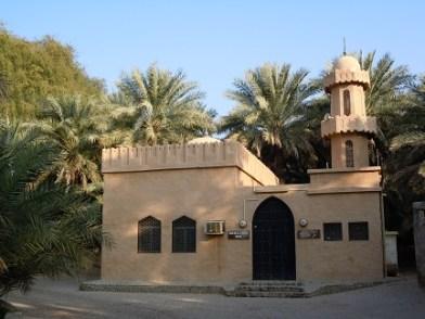 Al Ain Oasis 6