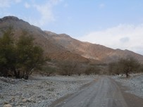 Wadi Al-Baih 12