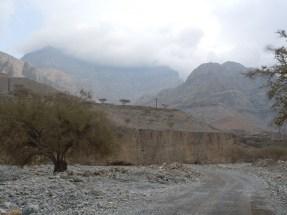 Wadi Al-Baih 8