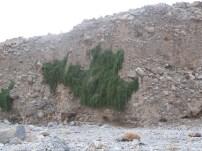 Wadi Al-Baih 9