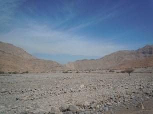 Wadi Ghalilah 25