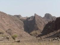 Wadi Kub 9