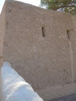 Al Qattara 11