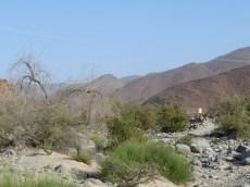 Wadi Al Helo Sharjah