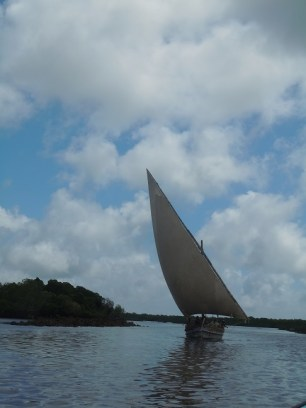 Dhows 19