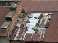 Rooftop 16