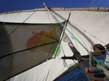 Sailing 15