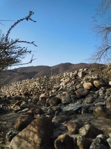 wadi Helo 6