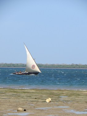 Dhow 7