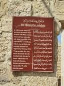 Latin Church 17