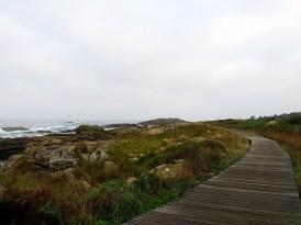 coastal-walk-9