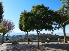 view-of-alhambra-11