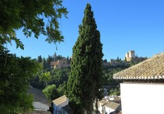 view-of-alhambra-8