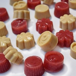 Mango and Coconut Gummies, and Strawberry Delight Gummies