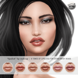 alaskametro-lipslick-makeup-for-Catwa