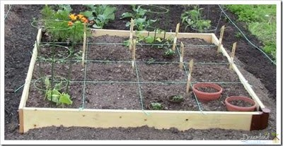 Square Foot Gardening at the YMCA Community Garden