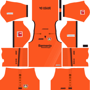 Bayer Leverkusen Goalkeeper Kits DLS 2018