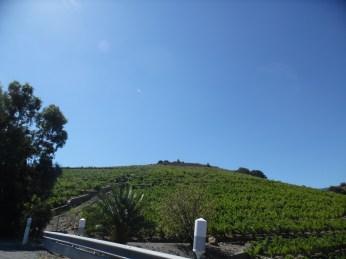 near Collioure