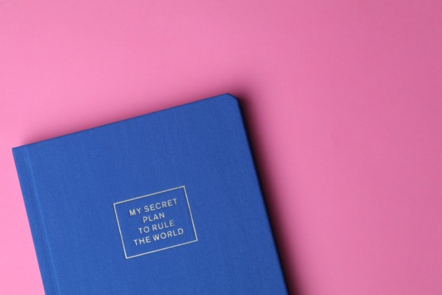 """Blue Planner notebook with text """"My Secret Plan to Rule the World"""""""