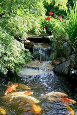 53 cheap landscaping updates that make a splash 35