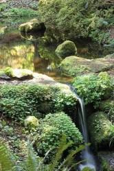 53 cheap landscaping updates that make a splash 5