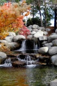 53 cheap landscaping updates that make a splash 9