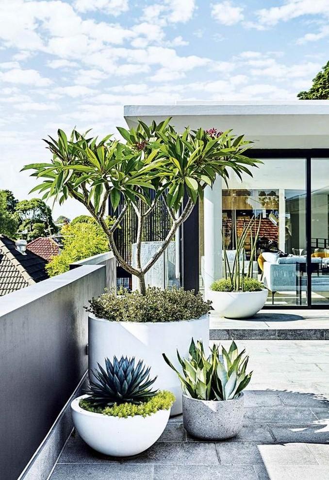 10 Rooftop Garden How To Build Home Decor 11