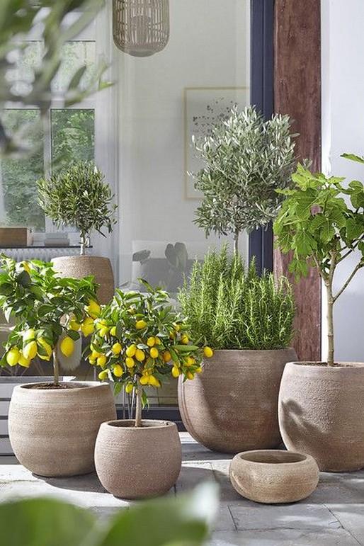10 Rooftop Garden How To Build Home Decor 15