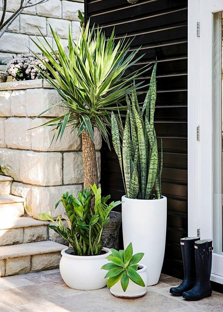 10 Rooftop Garden How To Build Home Decor 21