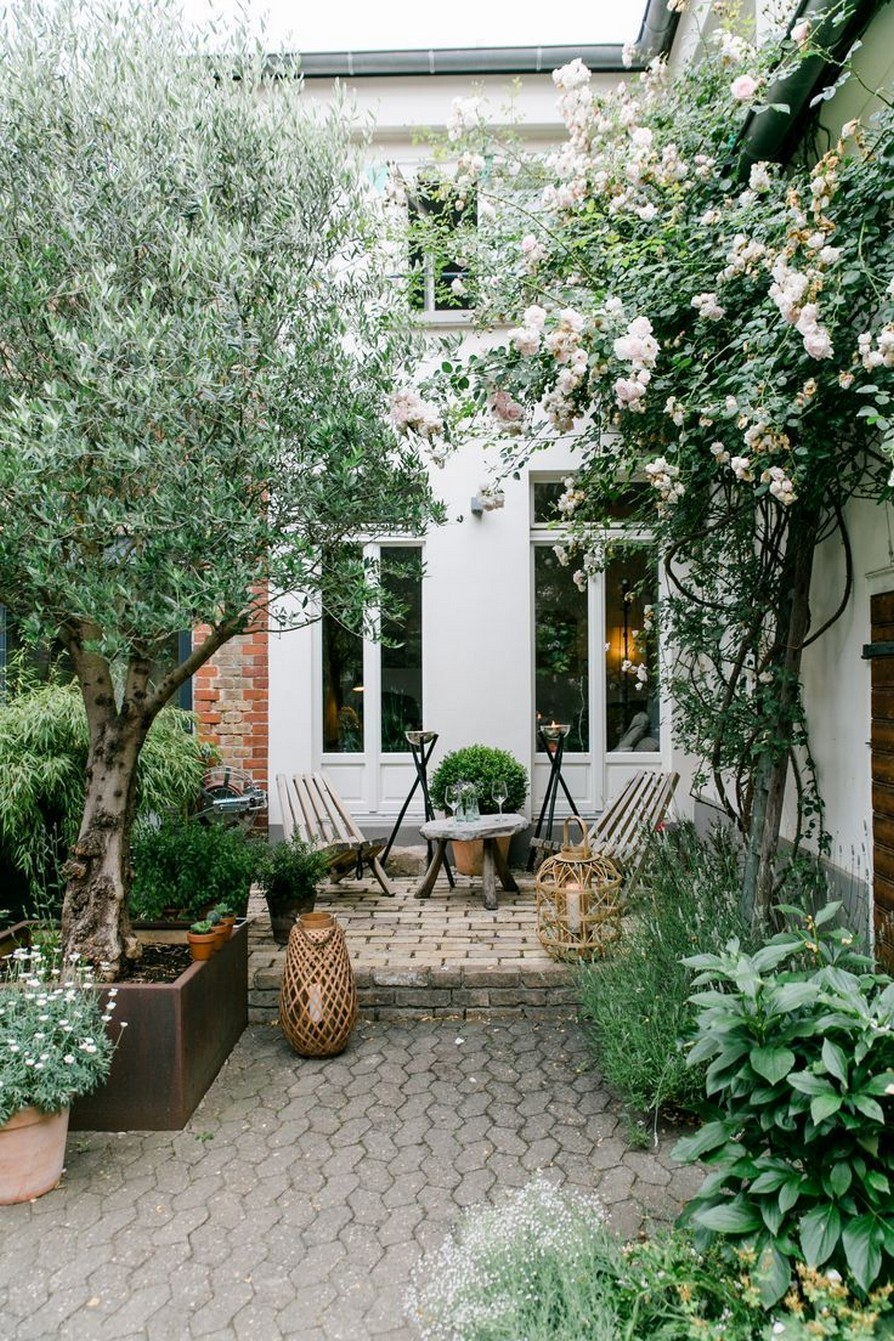 11 Outdoor Potted Plants Grow Helping 3