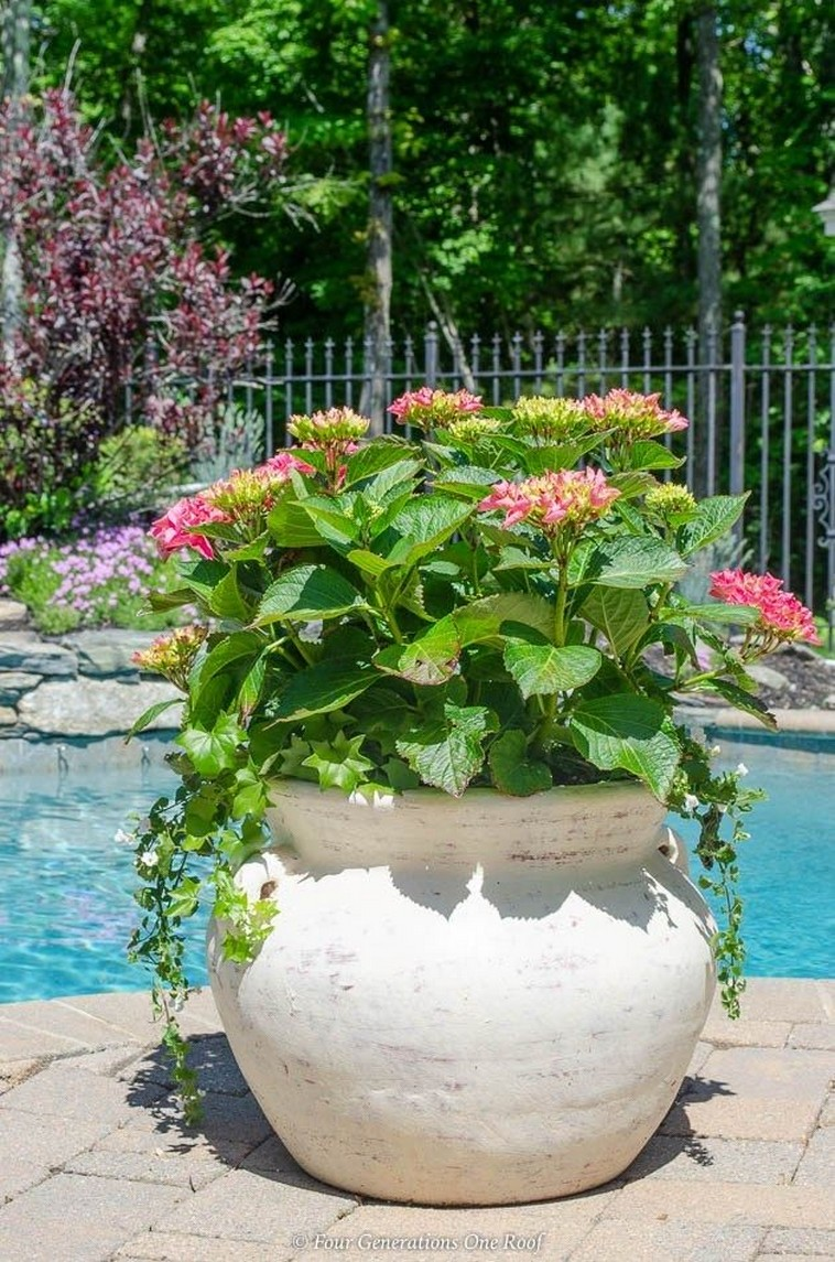 12 Container Gardening Ideas For Pots And Planting Herbs Home Decor 2