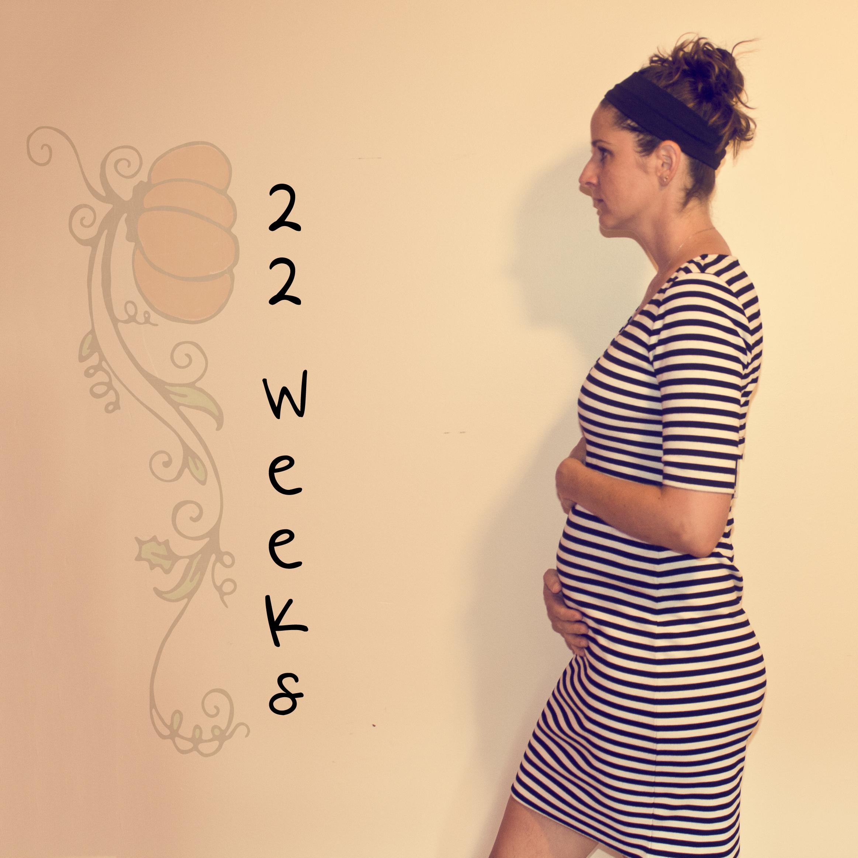22 Weeks Last Week The Here And Now