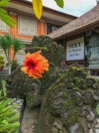 NEKA Museum of Art, Ubud