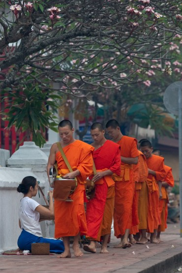 Monks collecting Alms in the morning