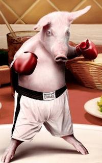 pigfight