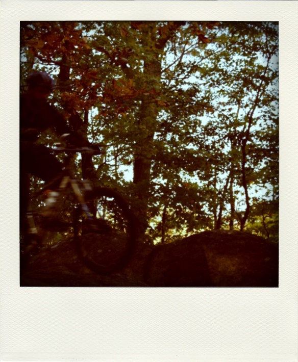 the polaroid never quite took the photo when you thought (just like camera phones today!)