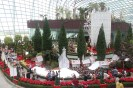The main Christmas Display