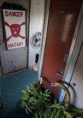Hier transportieren Reisende Ihre Bananen-Einkäufe. Bei der Tür handelt es sich um das Zugende. Danger...