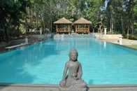 Swimming pool in Kanakpura farmstay at Discovery Village | Image Reosurce : tripadvisor.in
