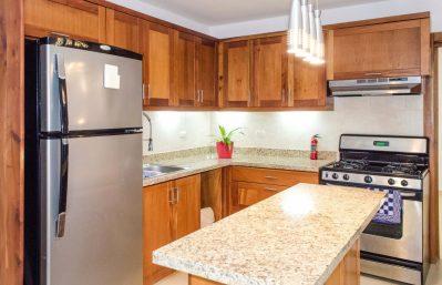 Home 2 - lower apt kitchen