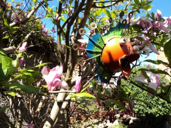 Magnolia Susan with a little hanging Fish in the tree
