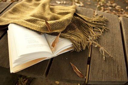 Karen's Killer Book Bench blog