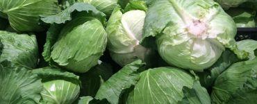 Organic vs Inorganic Foods: 6 Key Differences