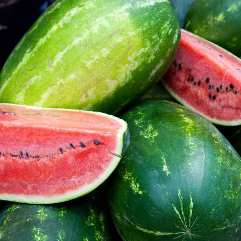 All Sweet Melon